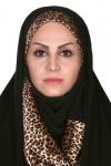 Soudabeh Salimizadeh