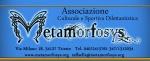 logo Metamorfosys
