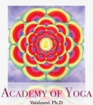 logo for academy of yoga