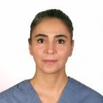 Nazila Dehmiani